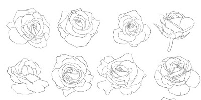 drawing flowers roses vector 26672152